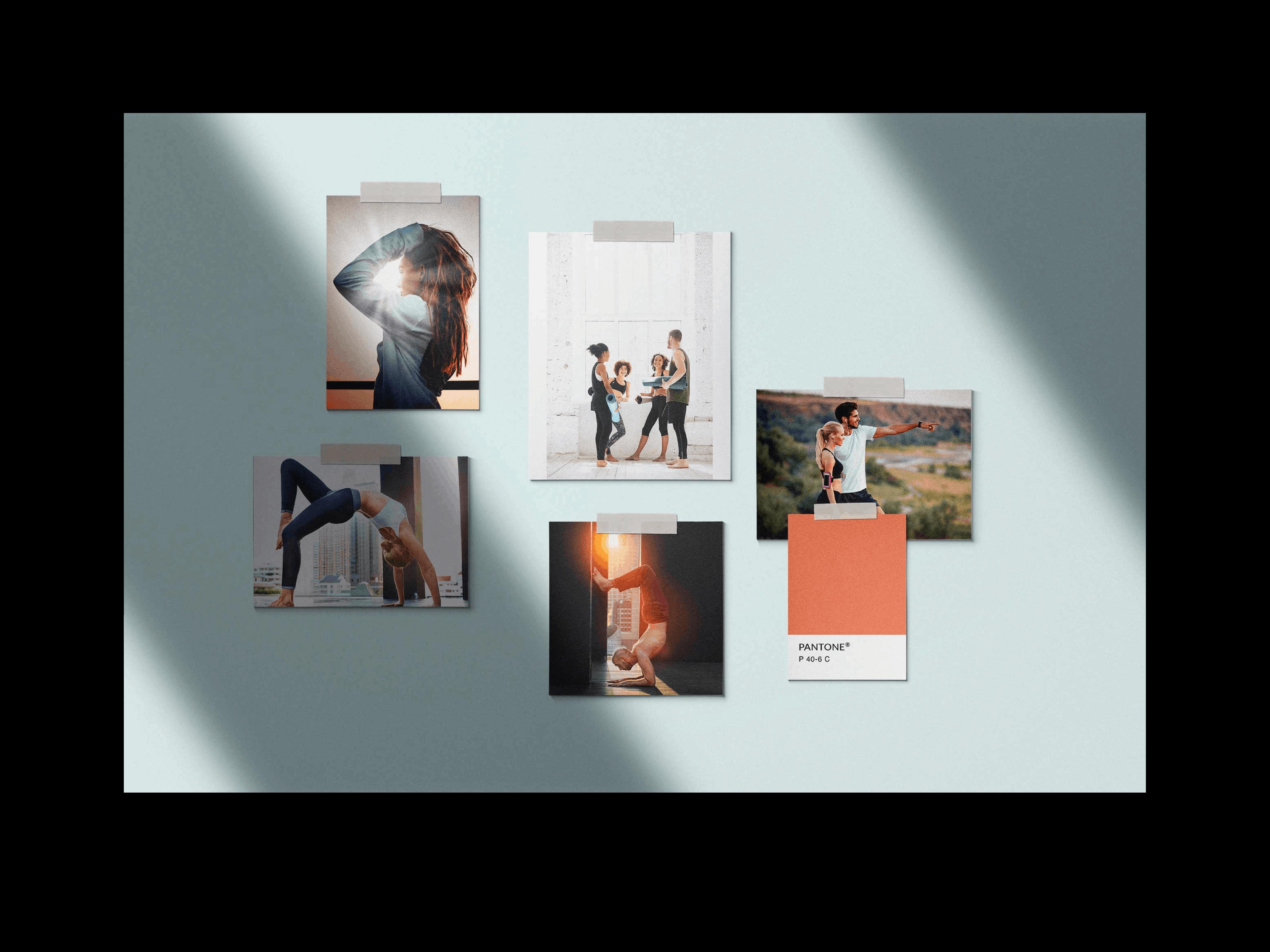 Back-Forty-Portfolio-The-Practice-Studio-Mood Board